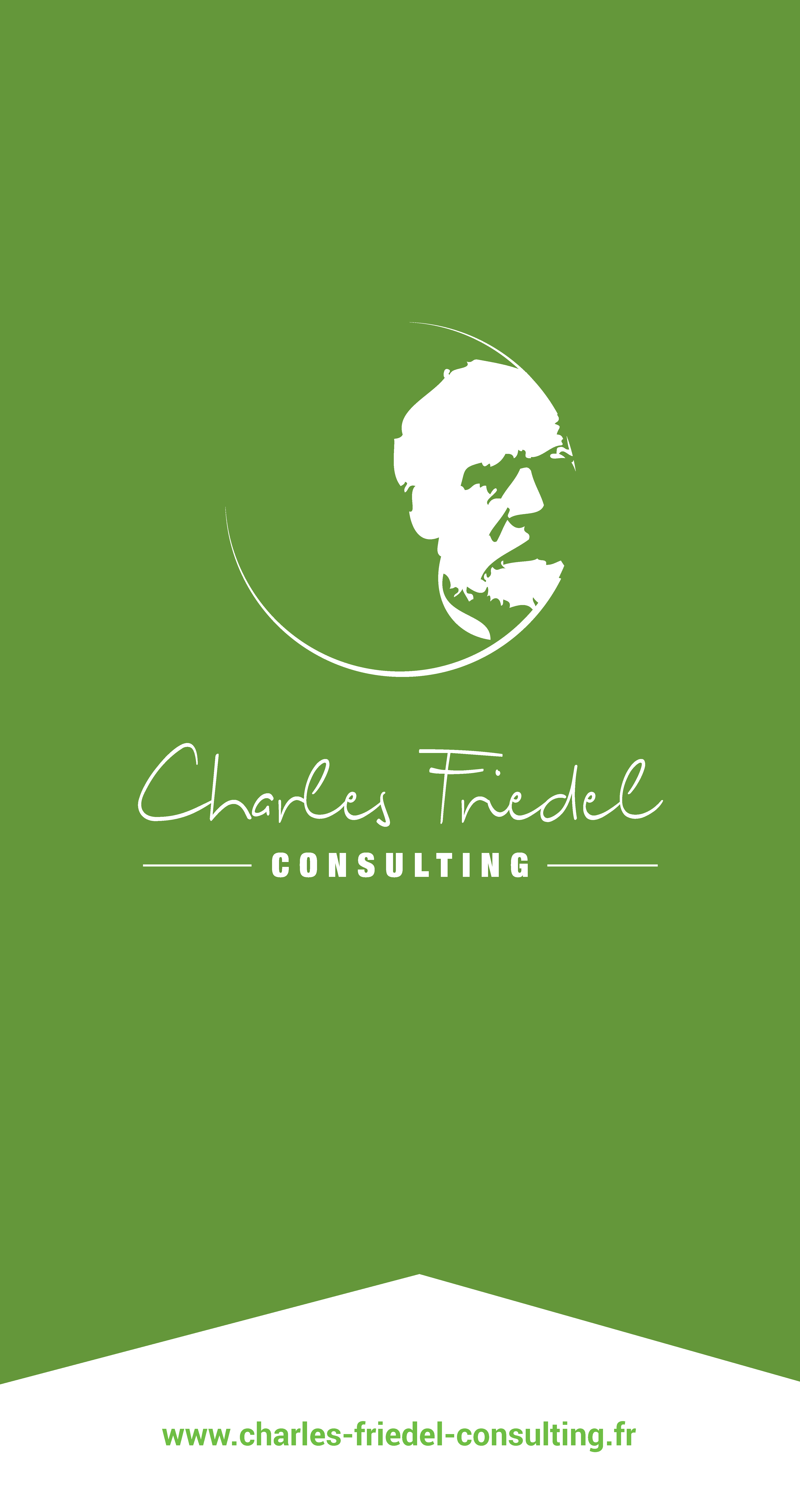 Charles Friedel Consulting